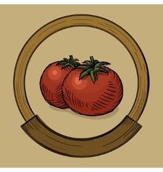 Label for tomato sketch style vector image vector image