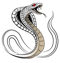 Vector snake cobra vector
