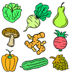 vegetable object set vector image vector image