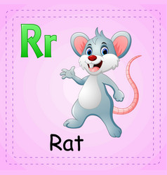 animals alphabet r is for rat vector image