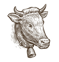 cow sketch hand drawn farm animal vintage vector image