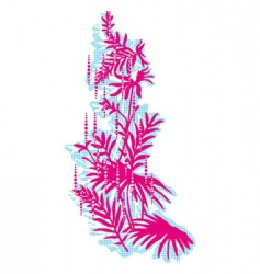 floral print vector image