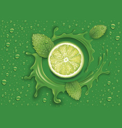 Green background with many drops mint leaf vector