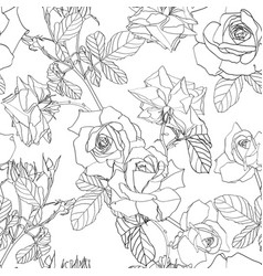 Hand drawn line roses flowers pattern vector