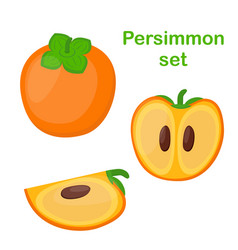 Persimmon tasty vegetarian fruit and slices vector