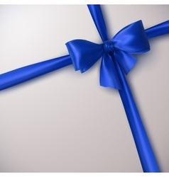 Blue Bow And Ribbon vector