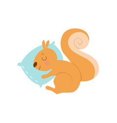 cute little squirrel animal sleeping on pillow vector image