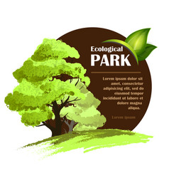 ecological design template vector image