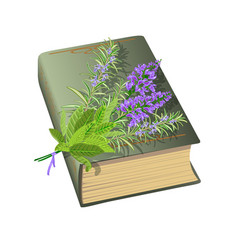 old book with bunch of flowers vector image
