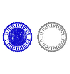 textured 15 years experience scratched stamps with vector image