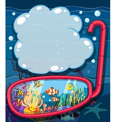Underwater scene with sea animals vector