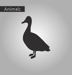 Black and white style icon of wild duck vector