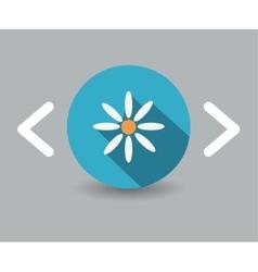 camomile icon vector image