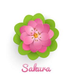 Isolated paper cut sakura flower vector