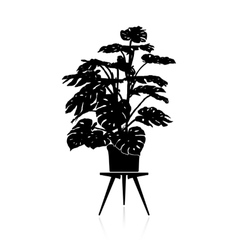 Monstera in a flower pot vector image