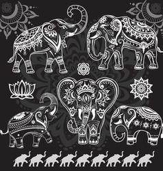 Set decorated elephants on black vector