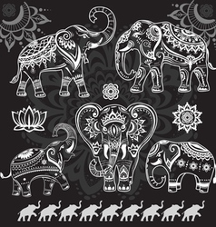 Set of decorated elephants on black vector