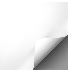 Curled white paper corner mockup template vector image