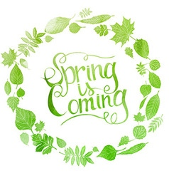 Green watercolor inscription spring is coming vector image vector image