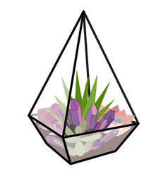 with glass florarium vector image vector image