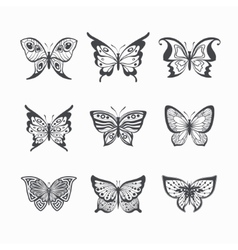 Collection of stylized butterflies vector image vector image