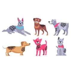 animal symbols 2018 year chinese calendar vector image