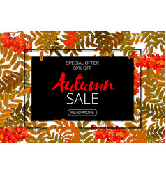 Horizontal autumn sale banner foliage and frame vector