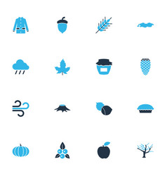 Seasonal icons colored set with pine cone maple vector
