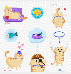 Set of cute cat in life situations isolated clip vector