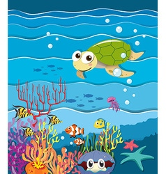 Underwater scene with turtle and fish vector