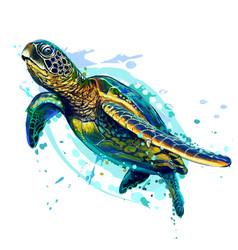 Sea turtle realistic artistic colored drawing vector