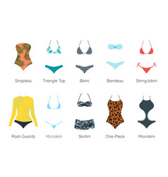 set of female swimsuit vector image