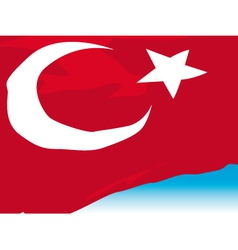 Turkish Flag vector