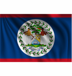 Waving belize vector