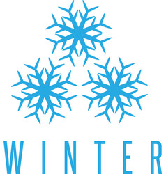 winter design concept with three snowflakes vector image
