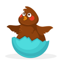 cute plump baby bird inside blue egg shell vector image vector image