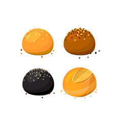 buns and rolls assortment with sesame at white vector image