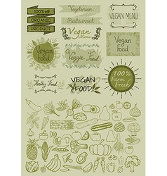 Hand drawn vegan elements vector image