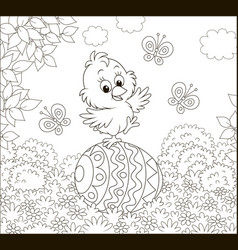 little easter chick on a decorated egg vector image