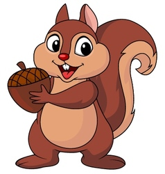 Squirrel cartoon with nut vector