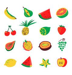 tropical exotic fruits set cute fresh organic vector image