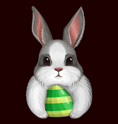 white bunny with egg isolated on dark vector image