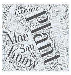 benefits of aloe vera Word Cloud Concept vector image