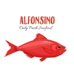 Alfonsino Fish in cartoon vector