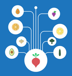 Flat icons citrus salad pawpaw and other vector