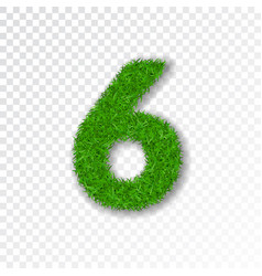 Grass number six green number six isolated on vector