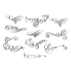 hand written calligraphic design set of swirl vector image
