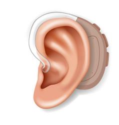 hearing aid aerophone behind ear organ human vector image