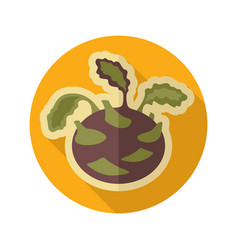 Kohlrabi flat icon vegetable vector