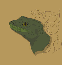 lizard portrait on a colored background vector image